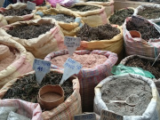 ブータンの市場